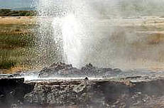Lake bogoria safari - hot water geyser