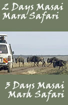 Masai Mara Safari - take this safari to visit this park famous for the migration of wildebeest